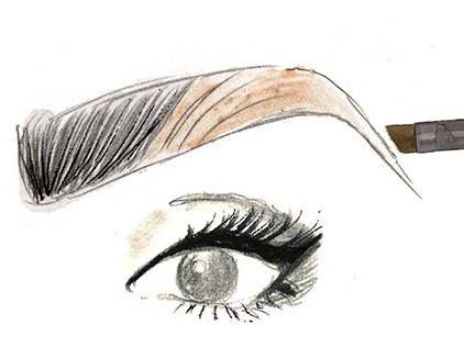 Как рисовать брови тенями и карандашами для бровей