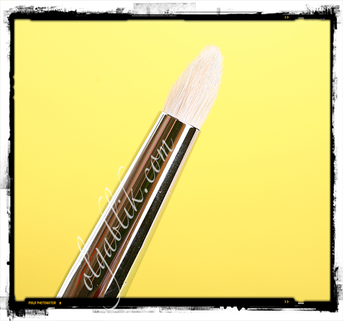 Кисти для макияжа Sigma Brushes Eyes Kit