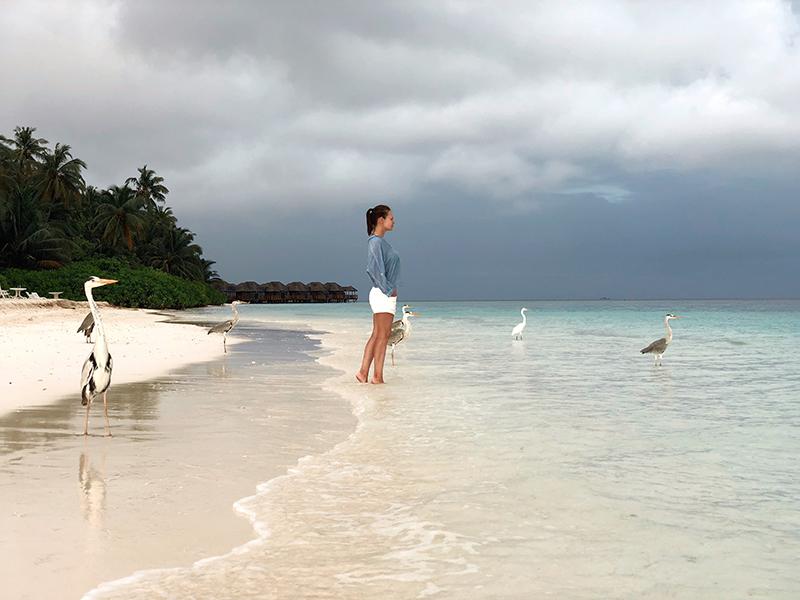 Как правильно выбрать отель на Мальдивах - отзывы и фото