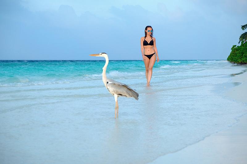 Как бюджетно съездить на Мальдивы